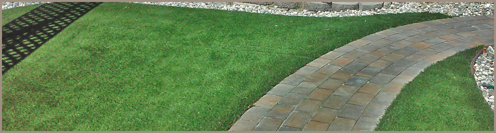 Artificial Turf & Paver Walkway